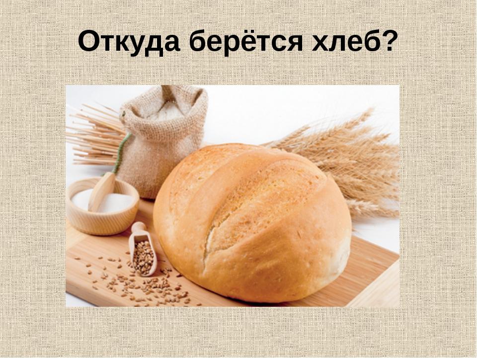 Откуда берётся хлеб?
