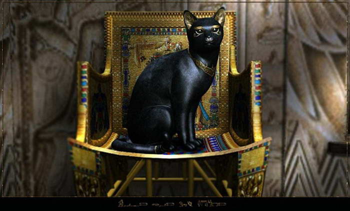 http://img0.liveinternet.ru/images/attach/c/2/69/644/69644780_1295784436_56298308_Egipt_cats_koteiko.jpg