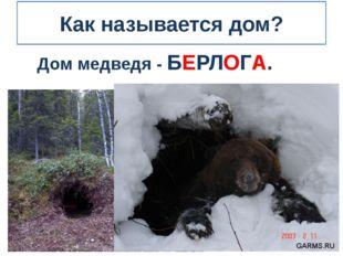 Дом медведя - БЕРЛОГА. Как называется дом?