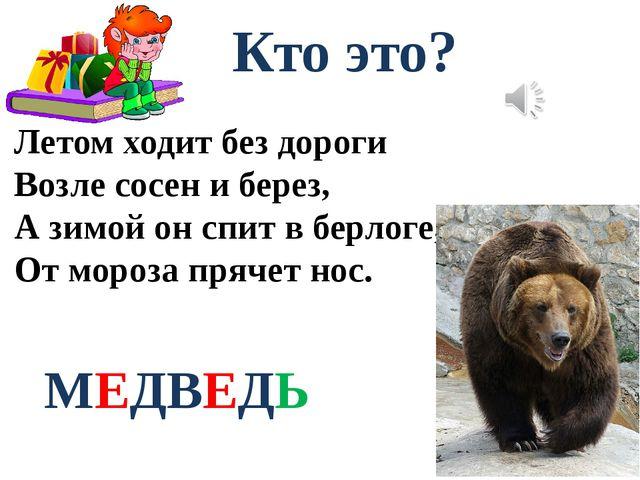 Кто это? Летом ходит без дороги Возле сосен и берез, А зимой он спит в берлог...