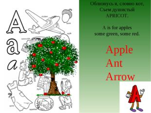 Облизнусь я, словно кот, Съем душистый APRICOT. A is for apples some green, s