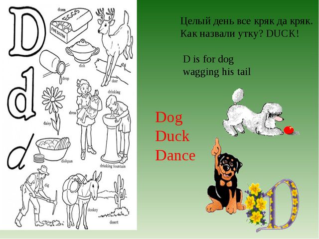 Целый день все кряк да кряк. Как назвали утку? DUCK! D is for dog wagging his...