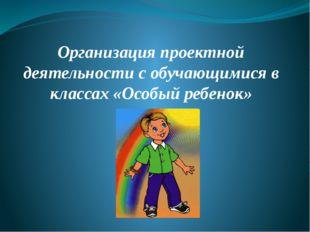 Организация проектной деятельности с обучающимися в классах «Особый ребенок»