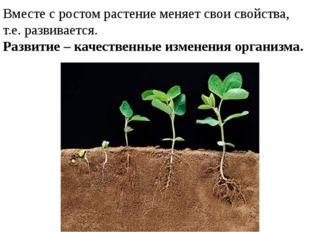 Вместе с ростом растение меняет свои свойства, т.е. развивается. Развитие – к