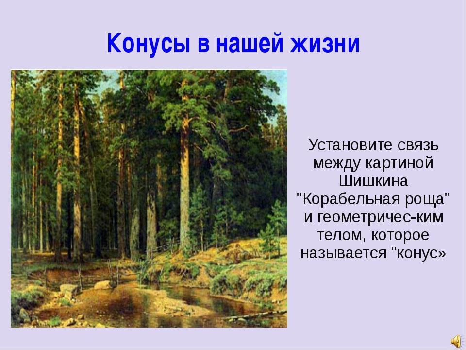 """Конусы в нашей жизни Установите связь между картиной Шишкина """"Корабельная рощ..."""