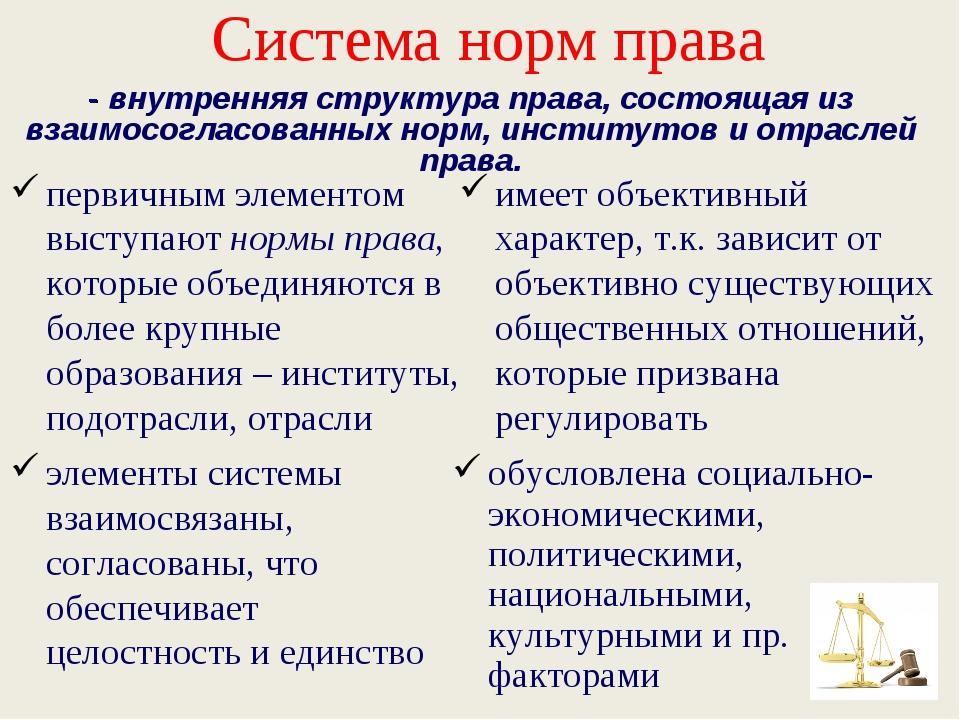 Система норм права первичным элементом выступают нормы права, которые объедин...