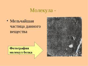 Молекула - Мельчайшая частица данного вещества Фотография молекул белка