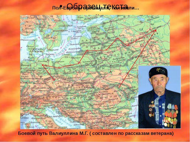 Пол-Европы прошагали, полземли… Боевой путь Валиуллина М.Г. ( составлен по р...
