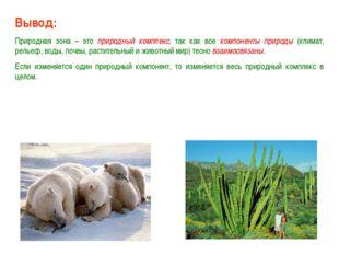 Вывод: Природная зона – это природный комплекс, так как все компоненты природ