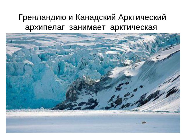 Гренландию и Канадский Арктический архипелаг занимает арктическая пустыня