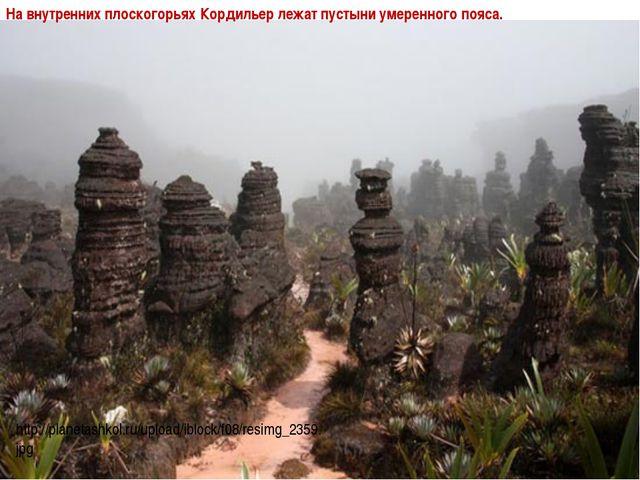 На внутренних плоскогорьях Кордильер лежат пустыни умеренного пояса. http://p...