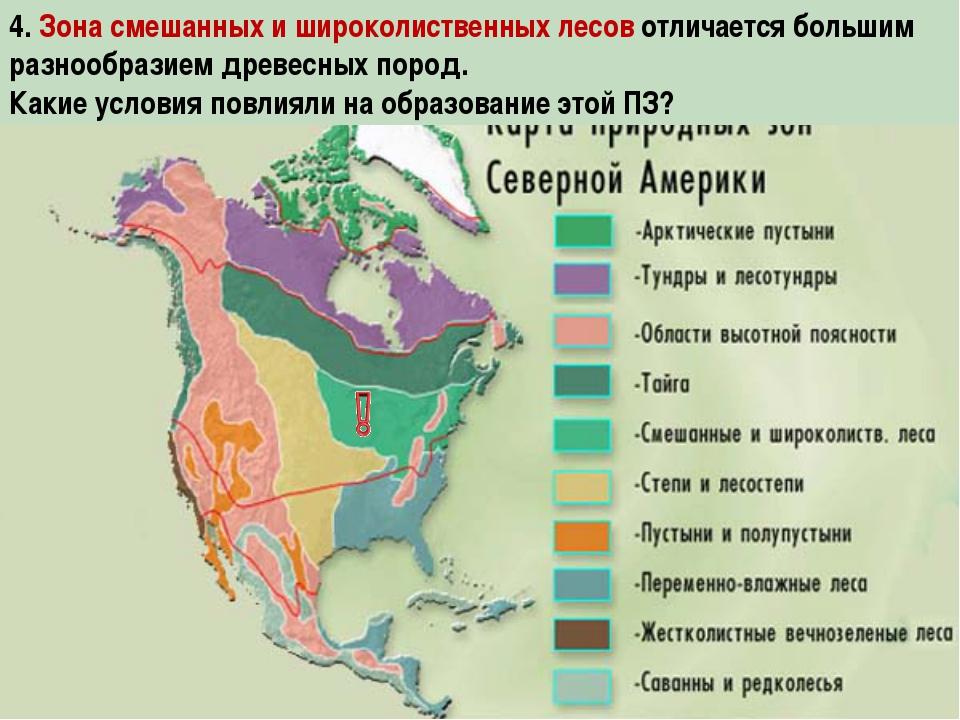 4. Зона смешанных и широколиственных лесов отличается большим разнообразием д...