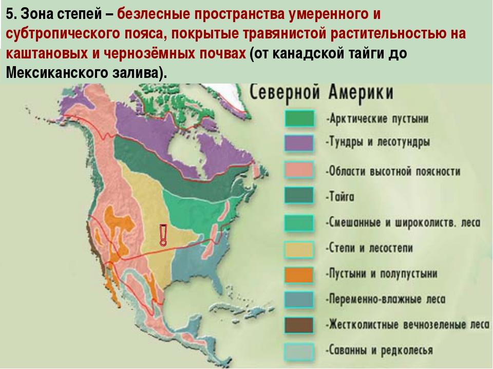 5. Зона степей – безлесные пространства умеренного и субтропического пояса, п...