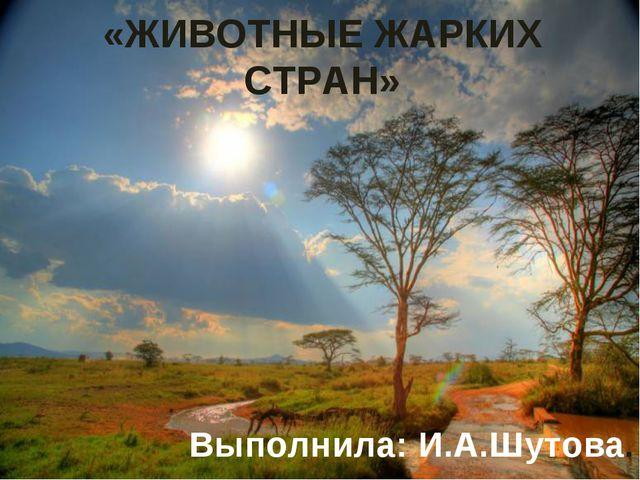 «ЖИВОТНЫЕ ЖАРКИХ СТРАН» Выполнила: И.А.Шутова.