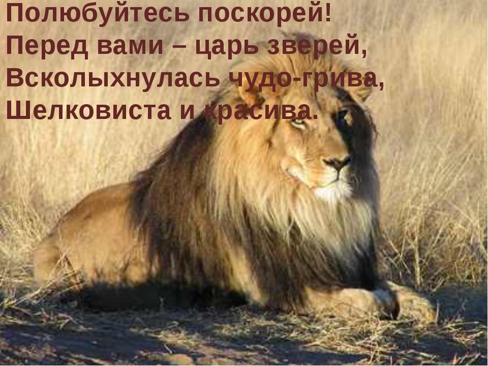 Полюбуйтесь поскорей! Перед вами – царь зверей, Всколыхнулась чудо-грива, Шел...
