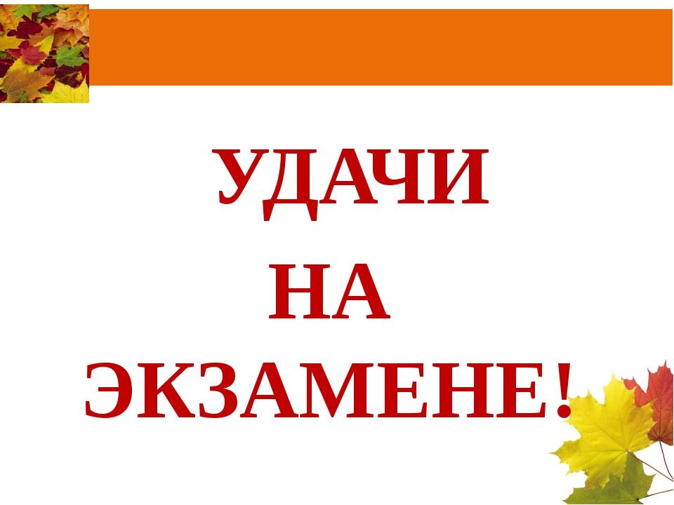 УДАЧИ НА ЭКЗАМЕНЕ!