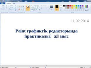 Paint графиктік редакторында практикалық жұмыс 11.02.2014