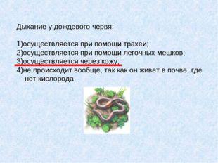 Дыхание у дождевого червя: 1)осуществляется при помощи трахеи; 2)осуществляет