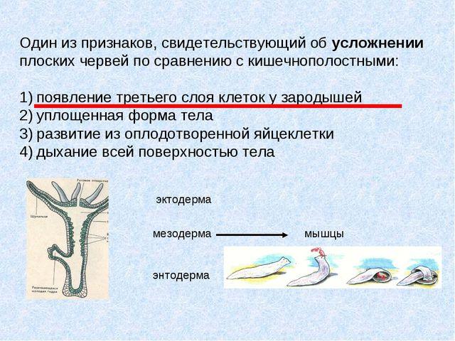 Один из признаков, свидетельствующий об усложнении плоских червей по сравнени...