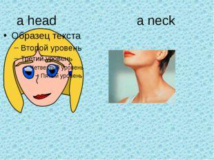 a head a neck