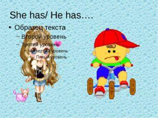 She has/ He has….