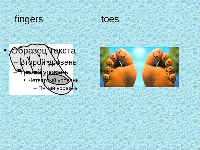 fingers toes