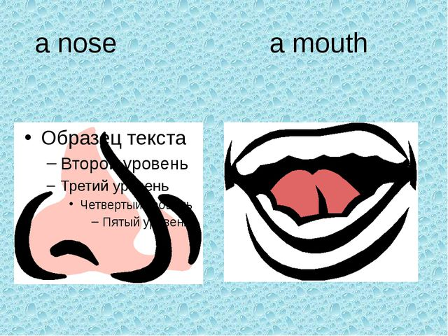 a nose a mouth