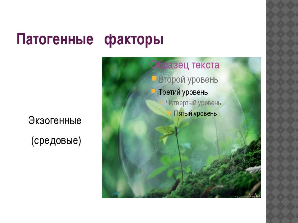 Патогенные факторы Экзогенные (средовые)