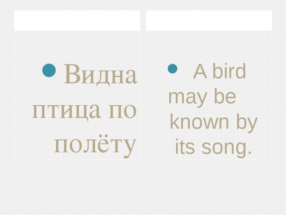 Видна птица по полёту A bird may be known by its song.