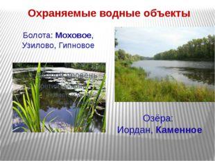 Охраняемые водные объекты Болота: Моховое, Узилово, Гипновое Озёра: Иордан,