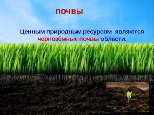 почвы Ценным природным ресурсом являются чернозёмные почвы области.