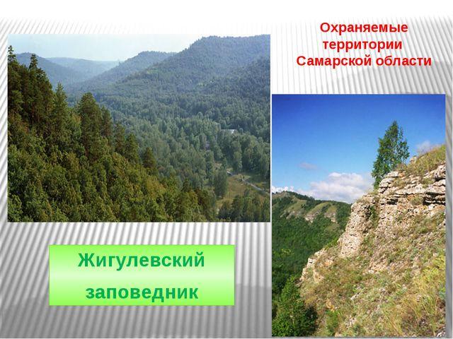 Охраняемые территории Самарской области Жигулевский заповедник