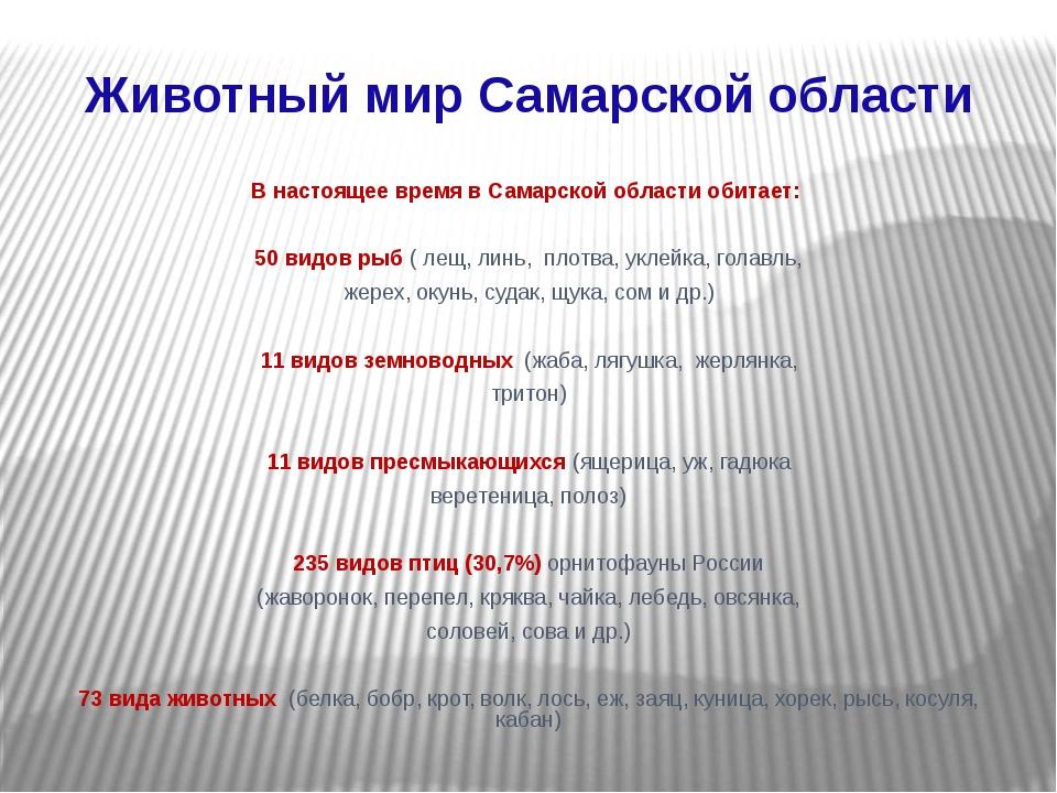Животный мир Самарской области В настоящее время в Самарской области обитает:...