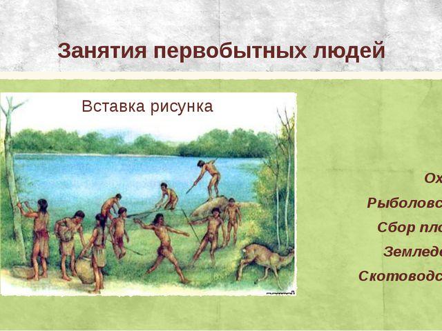Занятия первобытных людей Охота Рыболовство Сбор плодов Земледелие Скотоводство