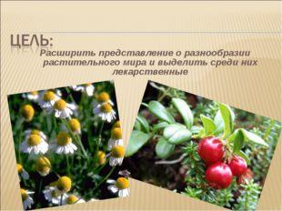 Расширить представление о разнообразии растительного мира и выделить среди ни