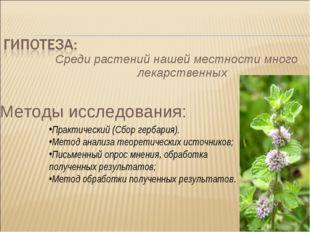 Среди растений нашей местности много лекарственных Методы исследования: Практ