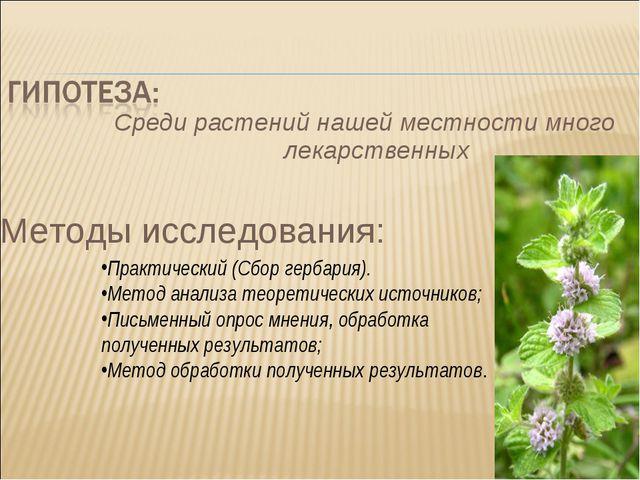 Среди растений нашей местности много лекарственных Методы исследования: Практ...
