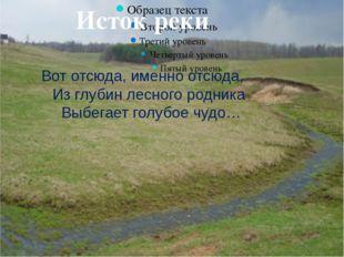 Исток реки Вот отсюда, именно отсюда, Из глубин лесного родника Выбегает гол