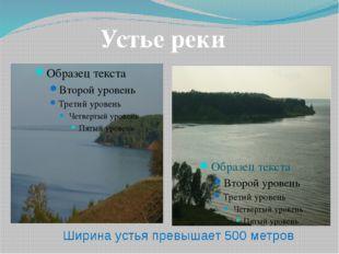 Устье реки Ширина устья превышает 500 метров