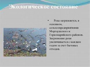 Река загрязняется, в основном, сельхозпредприятиями Моргаушского и Горномари