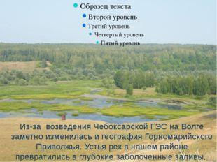 Из-за возведения Чебоксарской ГЭС на Волге заметно изменилась и география Го