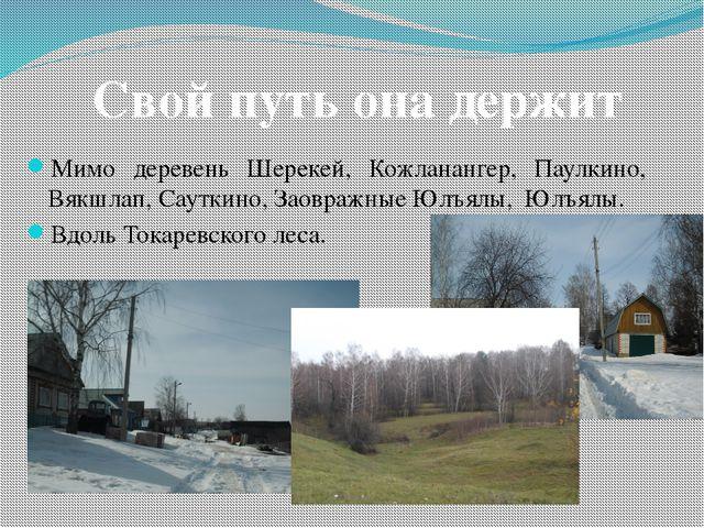 Мимо деревень Шерекей, Кожланангер, Паулкино, Вякшлап, Сауткино, Заовражные Ю...