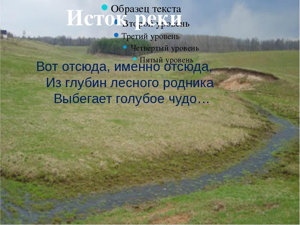 Исток реки Вот отсюда, именно отсюда, Из глубин лесного родника Выбегает гол...
