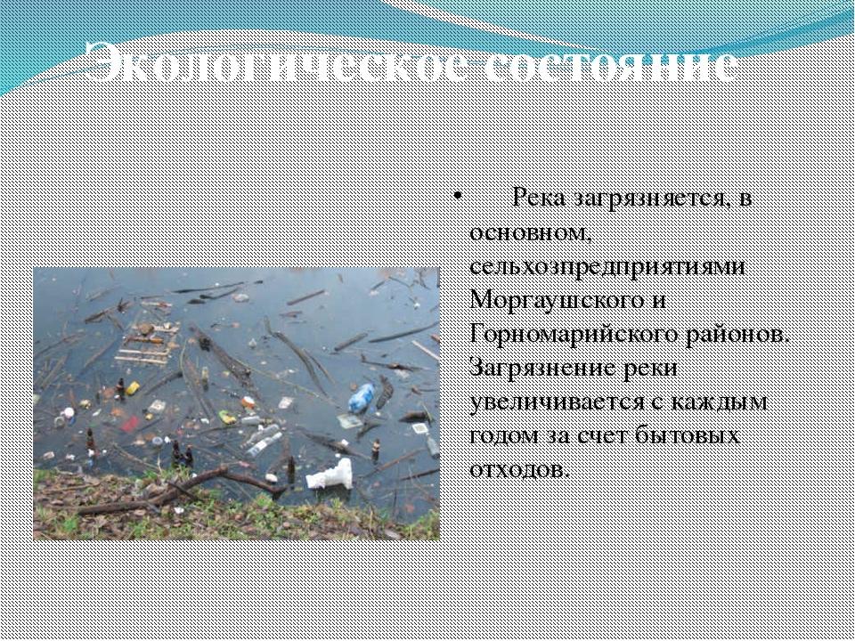 Река загрязняется, в основном, сельхозпредприятиями Моргаушского и Горномари...