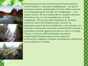 В некоторых местах центральной России нашли способ борьбы с горением торфяник