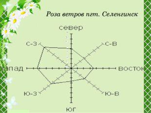 Роза ветров пгт. Селенгинск