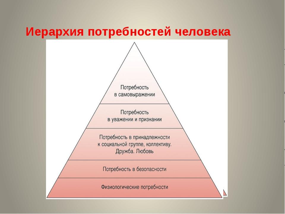 Анализ результатов обследования Шкала мотивов профессиональной деятельности В...