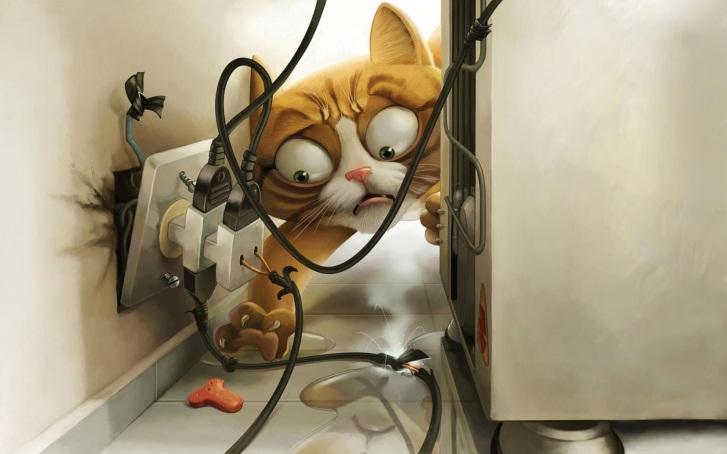 http://www.gutbilder.com/images/kitty-cats-animals-cute-1872-background-wallpapers.jpg