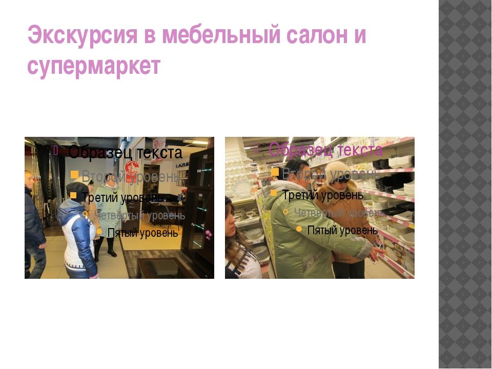 Экскурсия в мебельный салон и супермаркет