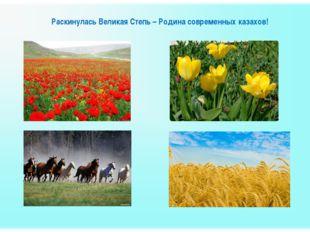 Раскинулась Великая Степь – Родина современных казахов!